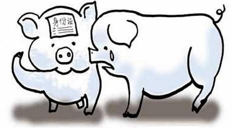 小猪耳朵简笔画
