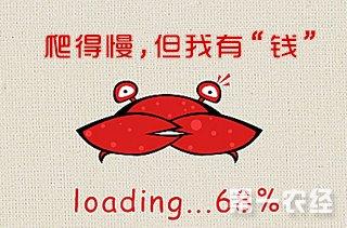 【养螃蟹专题】螃蟹养殖技术|视频|成本分析