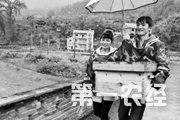 """贵州岑巩县:聂权夫妇唱响""""甜蜜""""致富曲"""