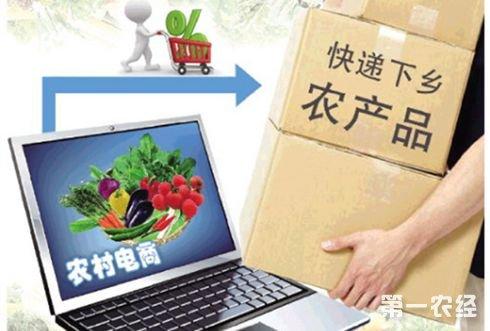 农村电商新热潮 带动农业新发展