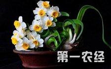 青海:备耕春播工作有序推进