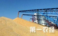 湖北省粮食局发布2016年收获粮食质量和品质报告