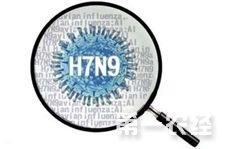 农业部就H7N9问题采取应急措施