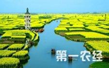 """四川资阳:推进农业供给侧结构性改革 """"十一条""""措施助力改革"""