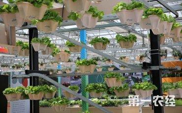 北京农业嘉年华:农业与科技融合促进农业领域新模式发展