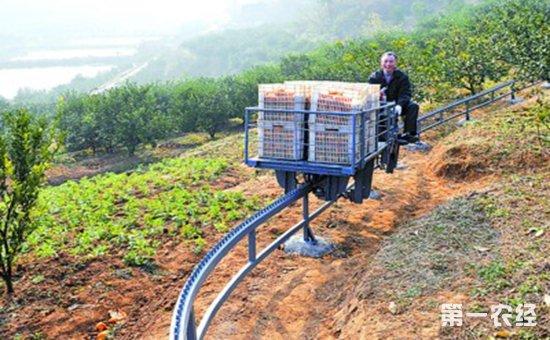 水果运输问题亟需解决 果园运输机纳入购机补贴范围