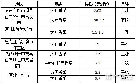 2017年8月1日香菜价格行情