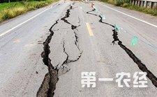 08月08日21时19分四川九寨沟县发生7.0级地震【现场直击视频】