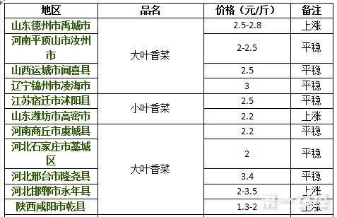 2017年8月14日香菜价格行情