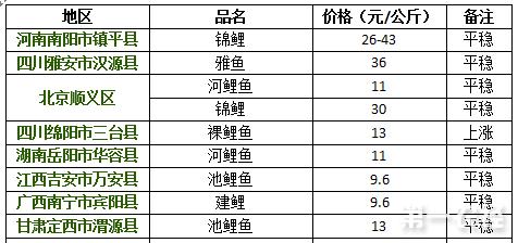 2017年8月16日鲤鱼价格行情