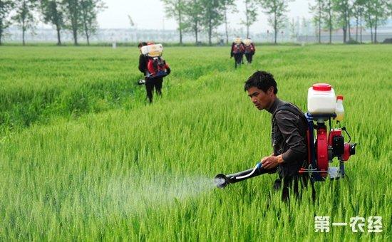 在双向政策的挤压之下 未来农资经销商该怎么办?