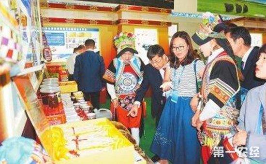 2017甘肃农博会现甘肃农业新形象 陇南土特产品引关注