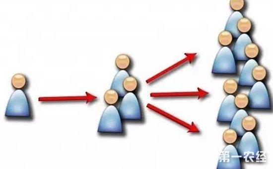农资销售技巧之客户转介绍 如何让你的客户变成你的导购员?
