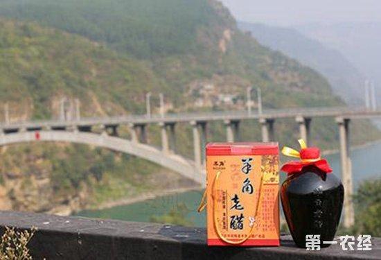 重庆武隆特产——羊角老醋
