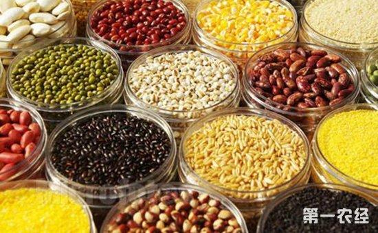"""小杂粮做成大产业 山西成优质杂粮的""""黄金产区"""""""