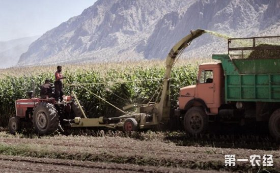 2017伊朗国际国际农业及灌溉设备博览会将于12月6日-9日举行