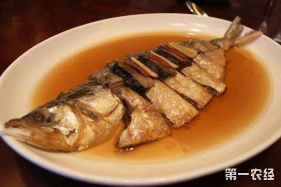 长江鲥鱼多少钱一斤?