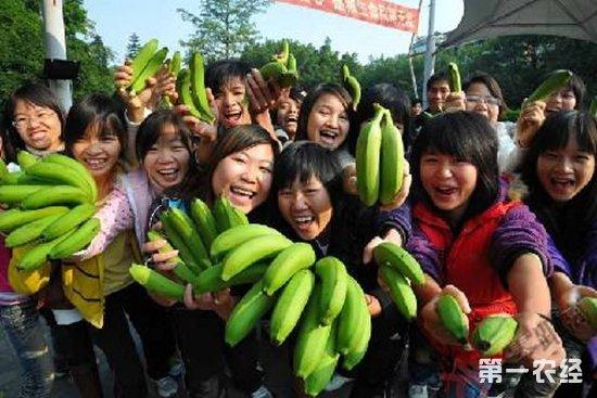 """30多万斤香蕉义卖成功!""""香蕉书记""""助农解滞销难题"""