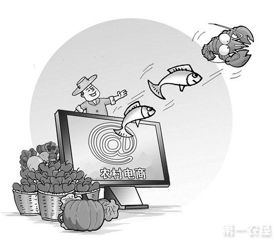 """""""共享互联网、走好'两山'路""""——第二届农村电商主题会议在浙召开"""