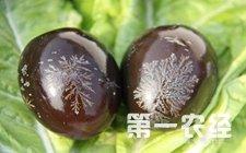 河北安新县地方特产——白洋淀松花蛋