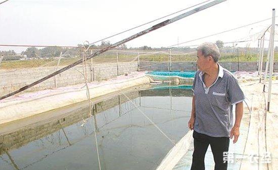 水蛭养殖中的商机!干水蛭可卖到1000元一公斤