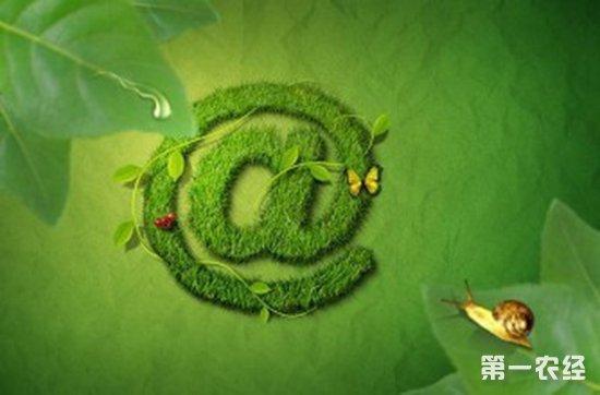 云南国资商城建成7000个农村电商服务站