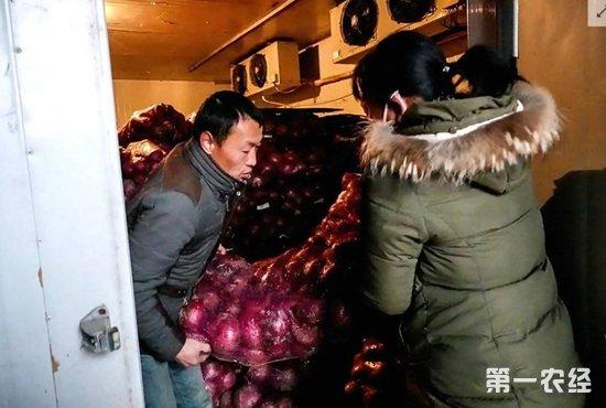 河南滑县:12万斤洋葱滞销 无人收购农户急
