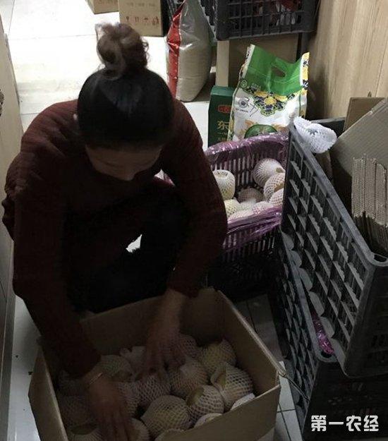 河南虞城:媒体报道解农愁 滞销苹果如今热销
