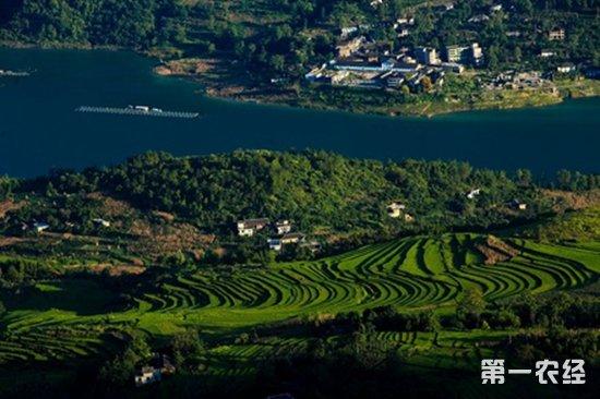"""湖北省计划到2020年实现绿色""""全覆盖"""""""