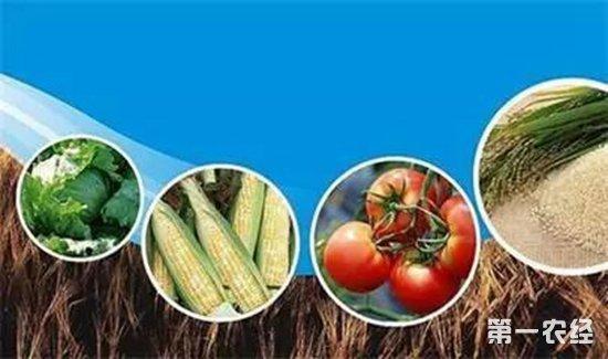 """农业部确定2018为""""农业质量年"""",将干几件影响农民的大事!"""
