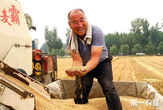 武汉市出台鼓励和规范工商资本投资农业农村发展的实施意见