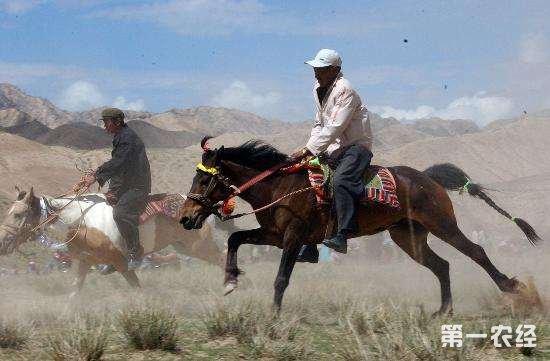 青海计划到2020年培训新型职业农牧民7.5万人