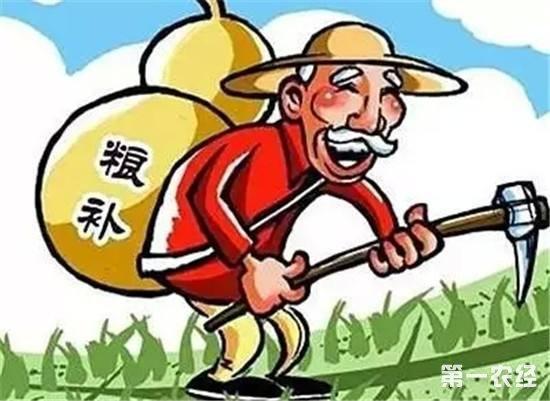 不用再怕赔钱啦!今年种小麦、玉米、稻谷会这样补贴!