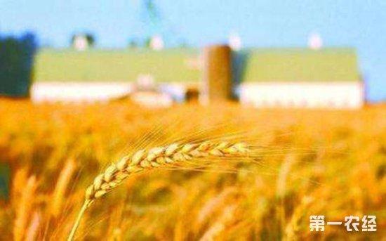 注意!2018农业领域将迎来6个重大改革
