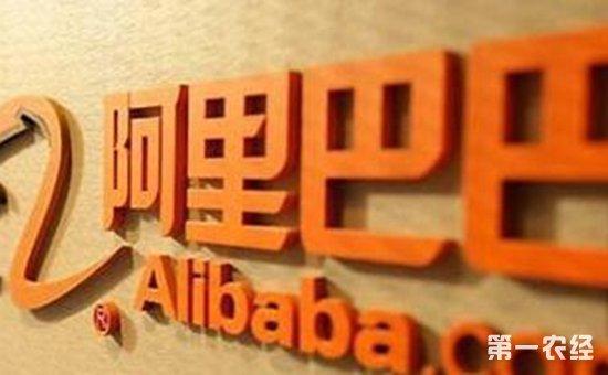 长岭县与阿里巴巴正式签约 村淘项目成崭新名片