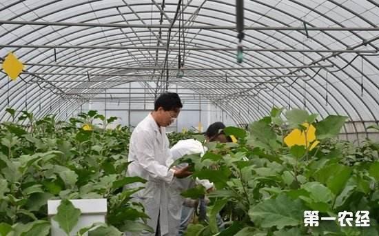 国务院印发《关于推进农业高新技术产业示范区建设发展的指导意见》