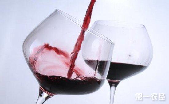 红酒应该怎么喝?喝红酒的注意事项