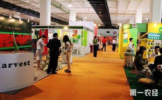揭东区第二届名优食品展销会完美落幕 年味浓浓