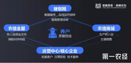 """AI时代养猪课题:左手""""公司养户"""",右手""""人工智能"""""""