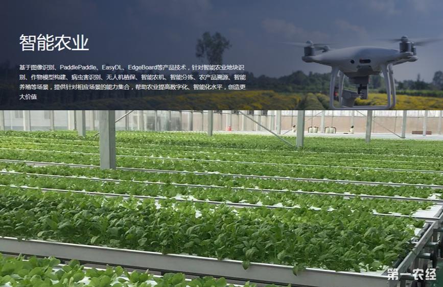 百度AI种菜,干一场农耕革命