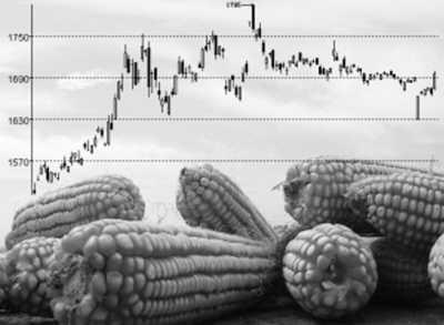 芝加哥交易所:大豆期货触及六个月来新高