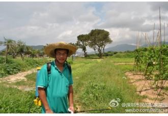 微资讯:奶牛需求激增 青岛大学保安围殴青年
