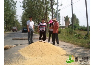 微资讯:北京鱼翅消费1天1亿 中国经济走投无路