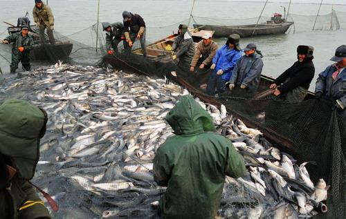 <b>渔政社会建设中担当的重任</b>
