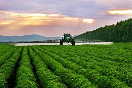 中央两年两定农业现代化 料成明年中央一号文件