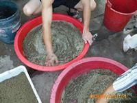 <b>用什么来育肥你的黄鳝?</b>