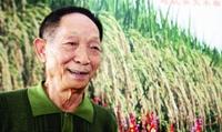 "<b>袁隆平:""超级稻""第五期目标达到每亩1100公斤!!!</b>"