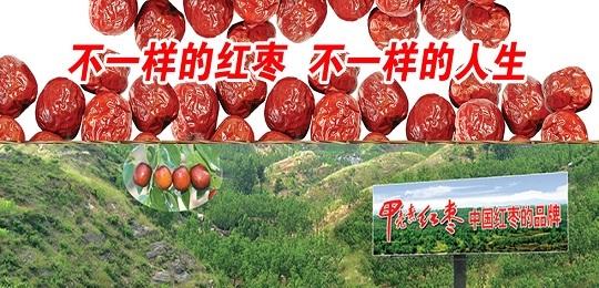 "<b>河北大枣产业救星——""甲壳素""红枣</b>"