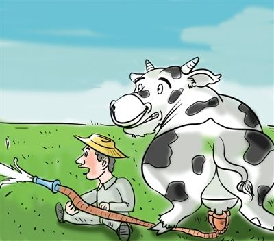<b>奶农获救了,农业部出面!</b>