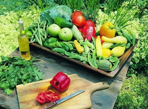 2015年发展有机农业的10大理由